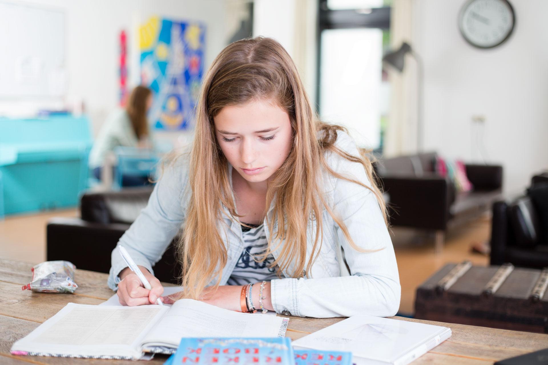 Bedrijfsreportage Beeldstudio huiswerkbegeleding Inzowijs